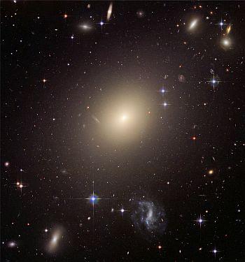 The giant elliptical galaxy ESO 325 G004