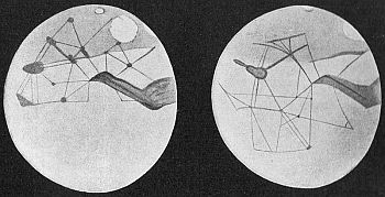 Percival Lowell's drawings of the