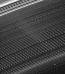 Saturn's D ring