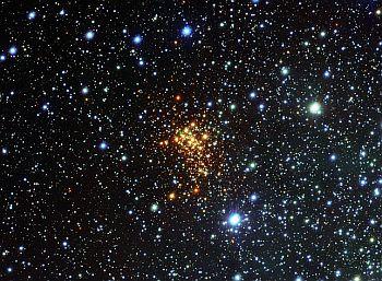 The super star cluster Westerlund 1