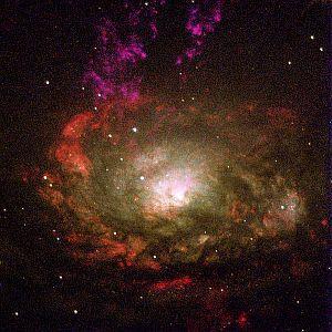 The Circinus galaxy, a Type II Seyfert galaxy